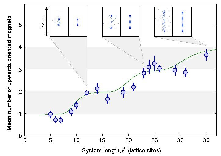 Fig. 1: With growing system length the number of upwards oriented magnets rises in steps. At each plateau the system represents an incompressible crystal. The green curve displays the numerical calculations of a group of theoretical physicists around Thomas Pohl. The insets at each step show the measured (left) und the predicted (right) distribution of Rydberg atoms.