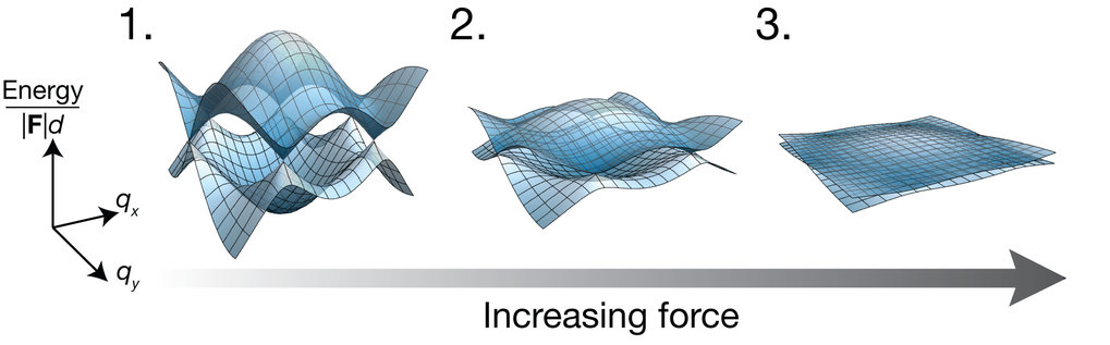 <p><em>The researchers accelerated the entire lattice, which results in an inertial force in the frame of the lattice, similar to pulling on a carpet. The larger the force (2,3), the faster the atoms move in crystal momentum space, and the less important the effect of the band energies become. The effect of the band energy is negligible for the strongest forces (3). (F: force, d: distance between neighbouring lattice sites). <br /></em></p>