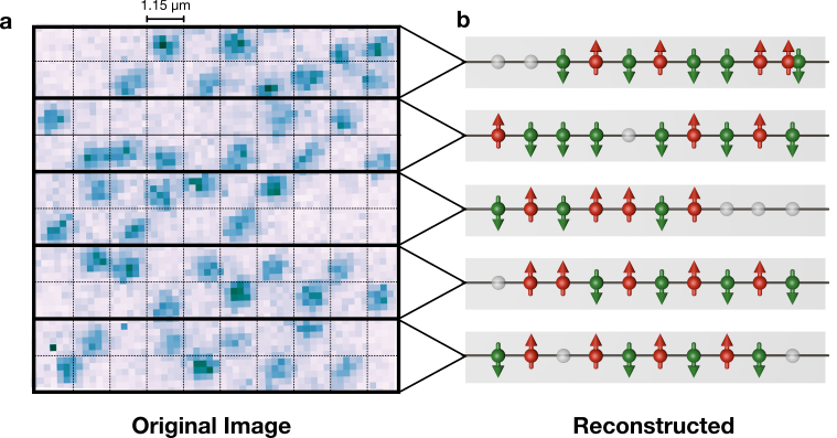<p><em>Figure 1: In (a) an originally obtained picture of a one-dimensional atomic chain is shown. The thick horizontal lines illustrate the barrier between different chains. In each chain, an atom appearing on the upper side of the thin dashed horizontal line has upward pointing magnetic moment (red) and vice versa as shown in the reconstructed image (b). In some cases, doubly occupied sites or holes (empty sites) are detected.  </em></p>